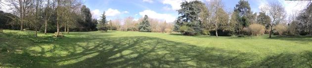 Fellows Garden, Trinity College