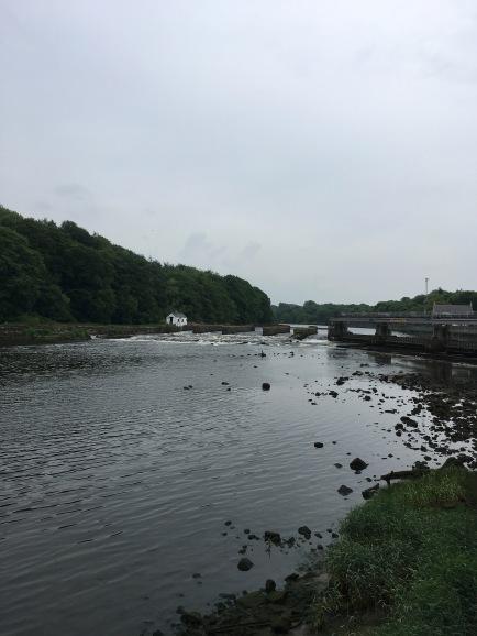 Water Bann, near Coleraine